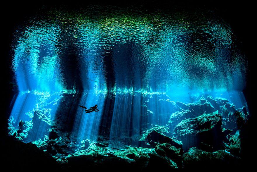 konkurs podvodnoj fotografii 2