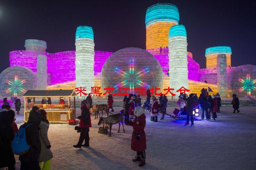 festival lda i snega 11
