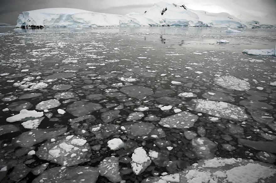 antarktida 13